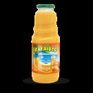 Caraibos Mangue Nectar