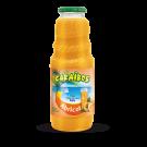 Caraibos ABRICOT Nectar VP1L