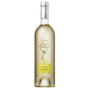 Bouteille de vin CHARDONNAY 75 CLx12 VIGNE ANTIQUE